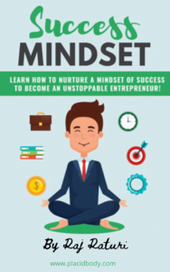 book-cover-Sucess-Mindset